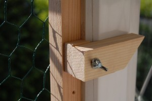 Save Our Earth Blog - The lock for the grate